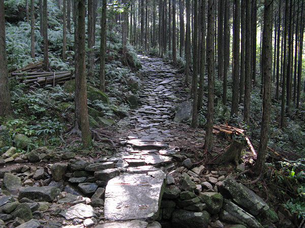 camino-japones-Kumano-Kodo