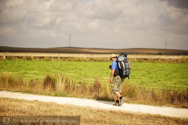 camino-santiago-solitario