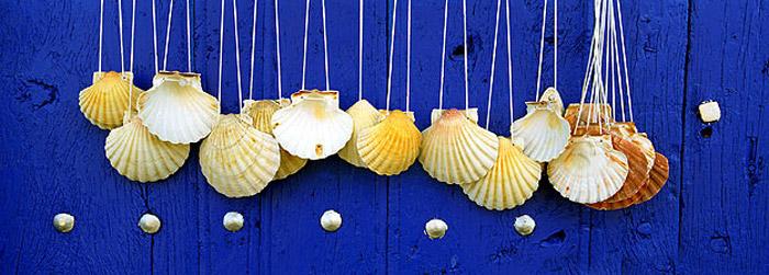 conchas-camino-santiago-curiosidades